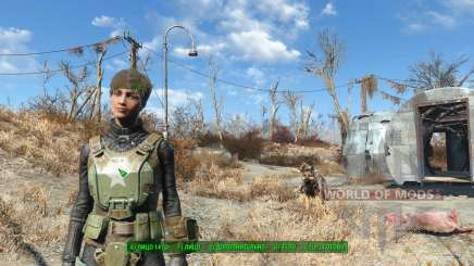 Hack para alterar a aparência para Fallout 4
