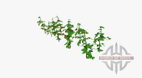 Tomate arbustos para Farming Simulator 2017