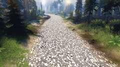 Textura de cinza do asfalto com pedregulho branc
