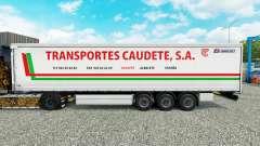 Pele Transportes Caudete S. A. cortina semi-rebo