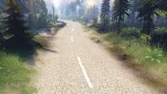 O pálido textura das duas pistas de asfalto
