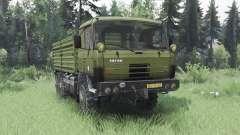 Tatra T815 VVN 20.235 6x6 1994 para Spin Tires
