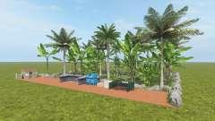 Fruit Farm - Coconut and Banana