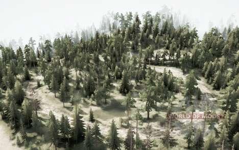 Estrada da floresta para Spintires MudRunner