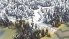 Ilha de inverno para Spin Tires