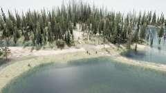 Floresta inundada 2